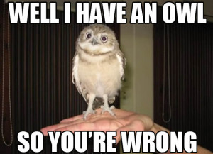 i-have-an-owl-so-youre-wrong