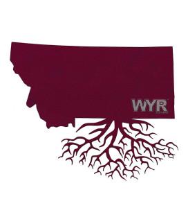 MT roots